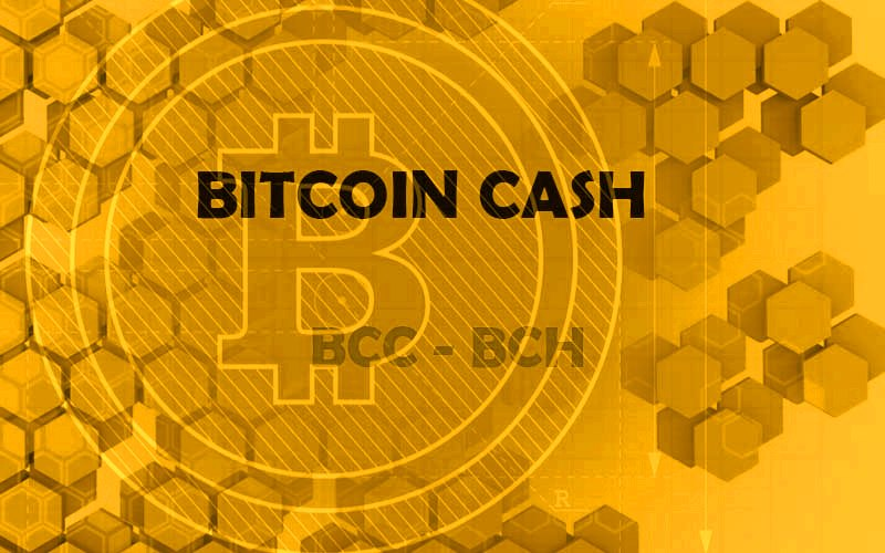 https://www.crypto-advice.com/images/uploads/1529580583_f131f0a838452169e7ae4f5fa662e9fa_bitcoin-cash.jpg